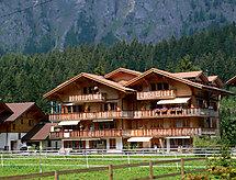 Kandersteg - Apartment Schweizerhof