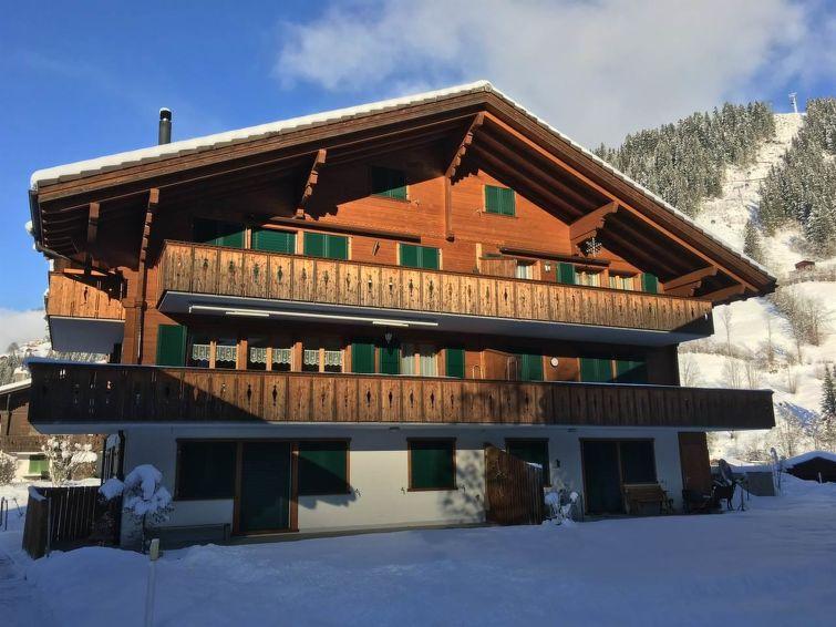 Modern Zwitsers Chalet : Appartement chalet lenk dänk app in lenk zwitserland
