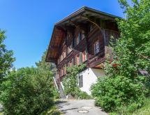 Saanenmöser - Appartement Chalet Ahorni