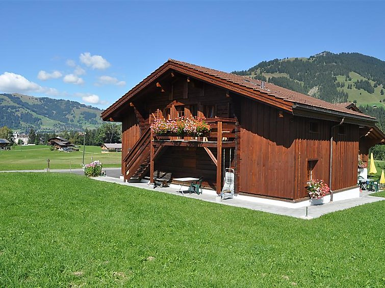 Weidhaus - Apartment - Gstaad