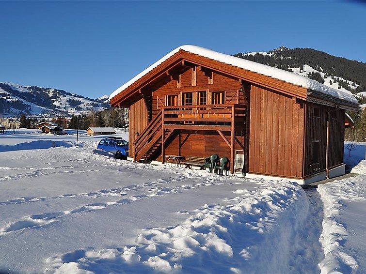 Alpenchalet Weidhaus - Apartment - Gstaad