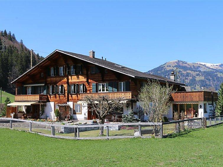 Baumerhus - Apartment - Gstaad