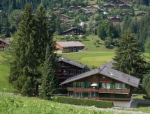 Gstaad - Appartement Les Silenes