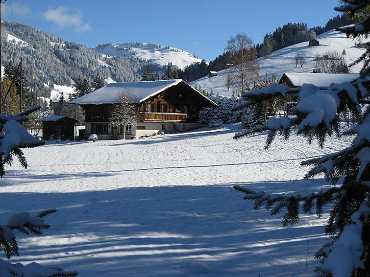 Chalet Nyati - Apartment - Gstaad