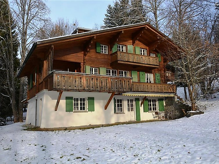 Les Erables, Chalet Chalet in Gstaad