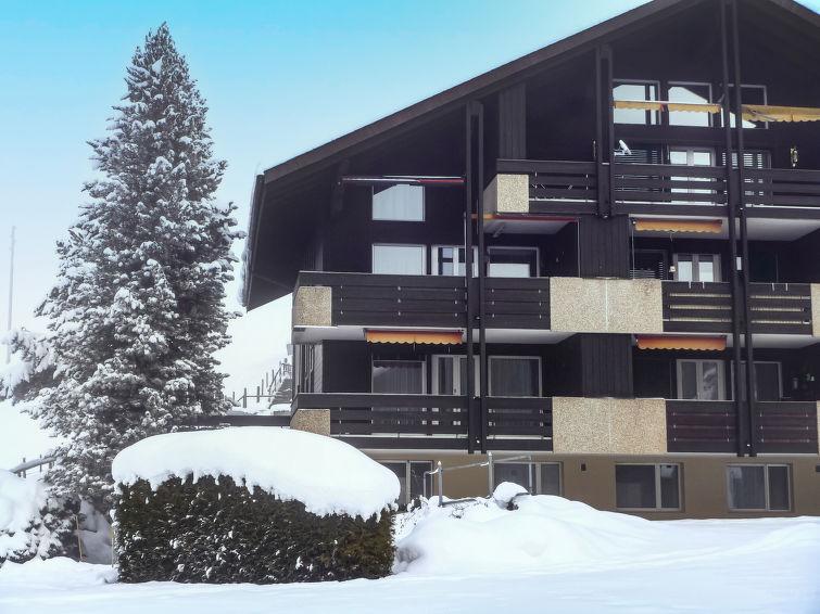 Sulegg 94-1 - Apartment - Beatenberg