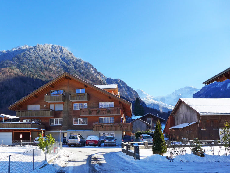 Carina - Apartment - Wilderswil-Interlaken