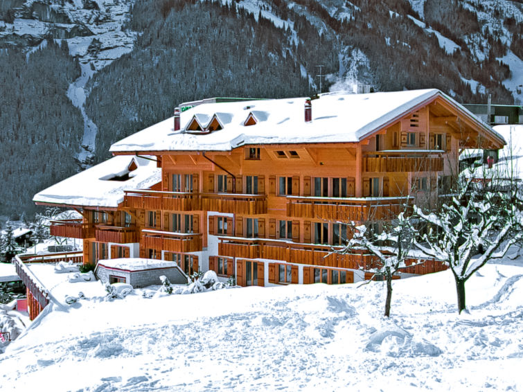 Modern Zwitsers Chalet : Appartement chalet abendrot utoring in grindelwald zwitserland