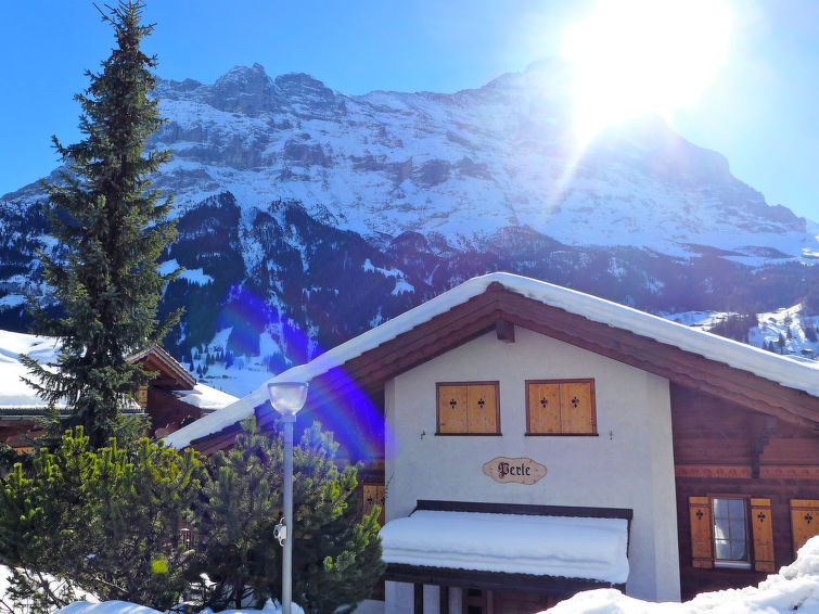 Chalet Perle Apartment in Grindelwald