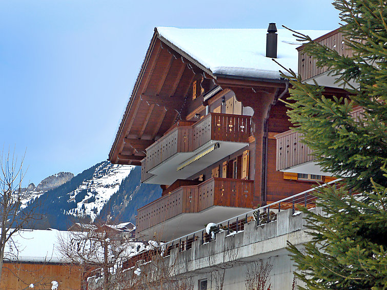 Chalet Perle - Apartment - Grindelwald