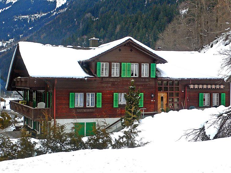 Schwendihus - Chalet - Grindelwald