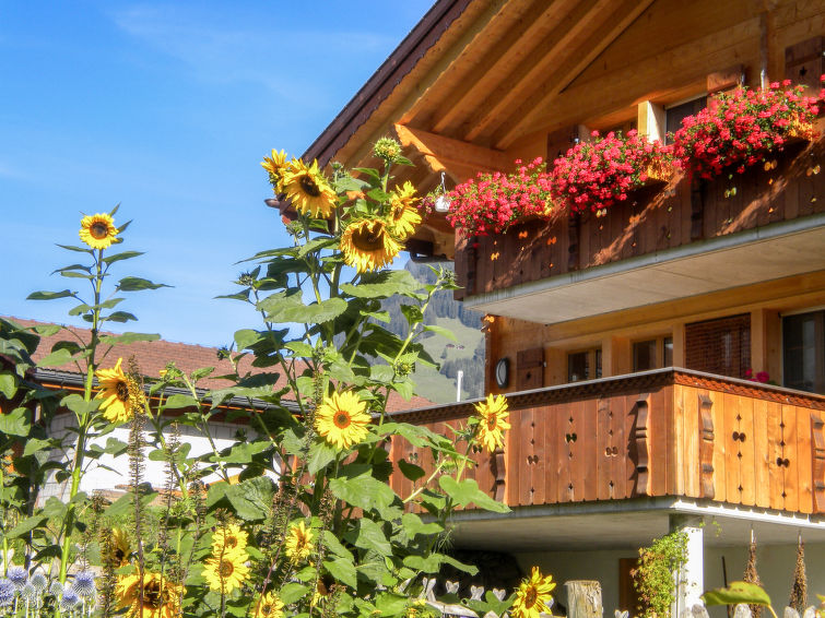 ufem Stutz Apartment in Grindelwald