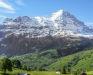 Immagine 11 esterni - Casa Chalet Ahornen, Grindelwald