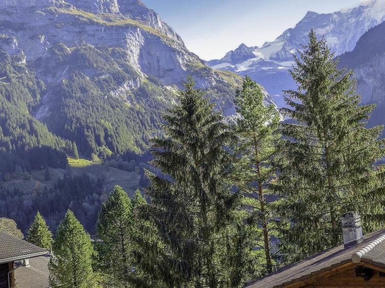 Casa Almis 3 Apartment in Grindelwald