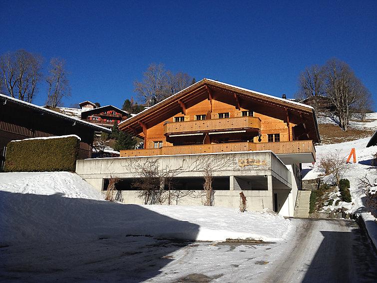 Chalet am Reeti - Apartment - Grindelwald