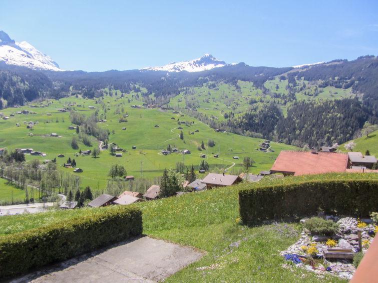 Slide10 - Mittelhorn