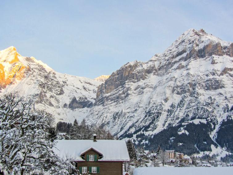 Chalet Mittelhorn - Apartment - Grindelwald