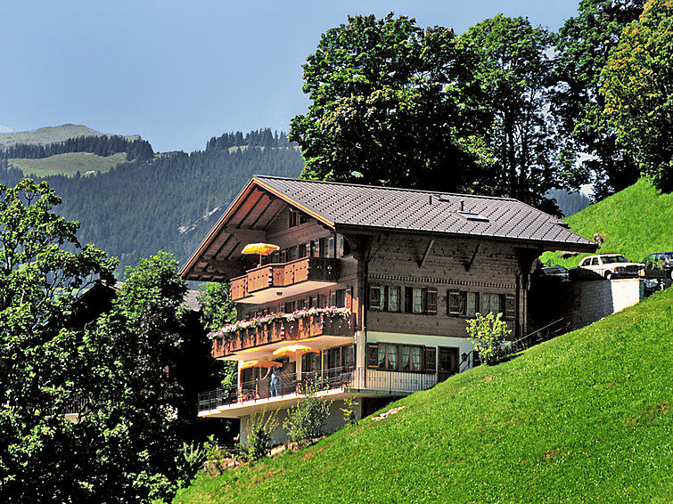 Chalet Aphrodite Apartment in Grindelwald