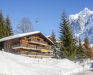 Apartment Chalet Bodmisunne, Grindelwald, picture_season_alt_winter