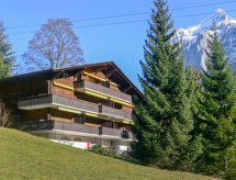 Grindelwald - Apartment Bodmisunne