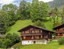 Grindelwald - Appartement Blaugletscher