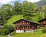 Appartement Blaugletscher, Grindelwald, Eté