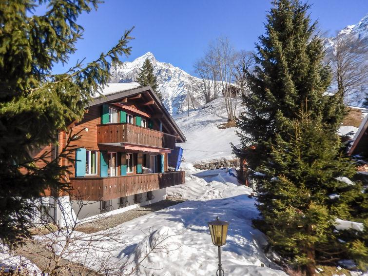 Chalet Bienli - Apartment - Grindelwald