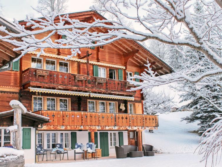 Chalet Jrene - Apartment - Grindelwald