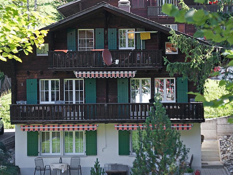 Spassvogel - Apartment - Grindelwald