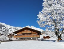 Grindelwald - Apartamenty Lohnerhus