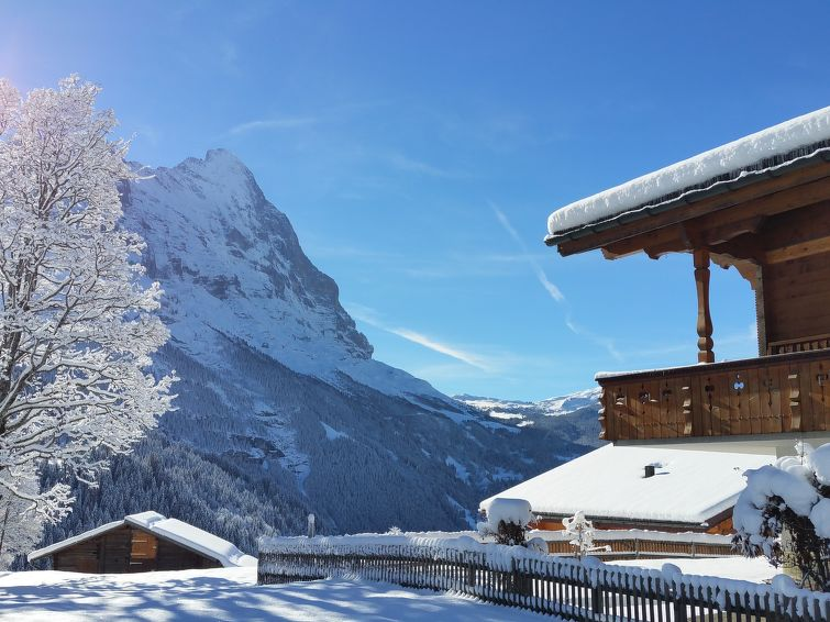 Lohnerhus Apartment in Grindelwald