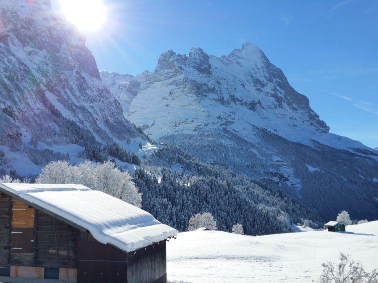 Lohnerhus Apartment in Grindelwald