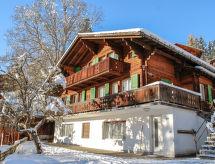 Grindelwald - Dom wakacyjny Caroline