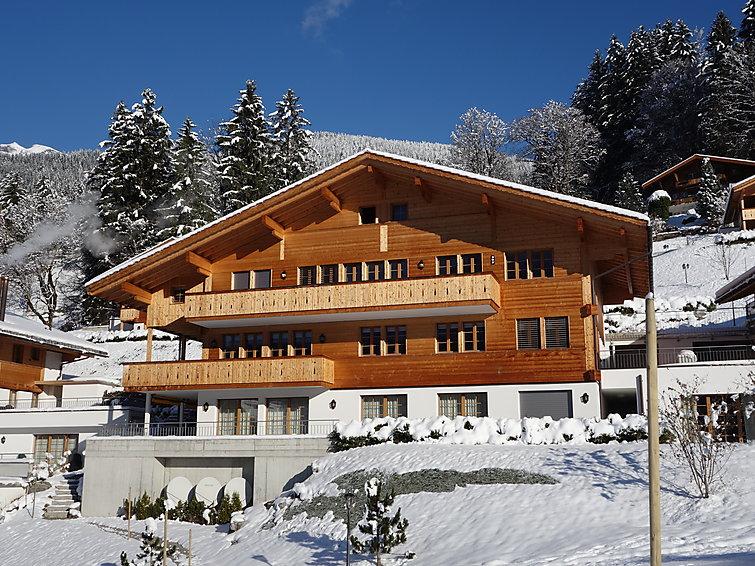 Chalet Mittellegi - Apartment - Grindelwald
