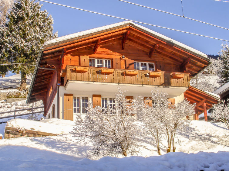 Chalet Reinhysi - Apartment - Grindelwald