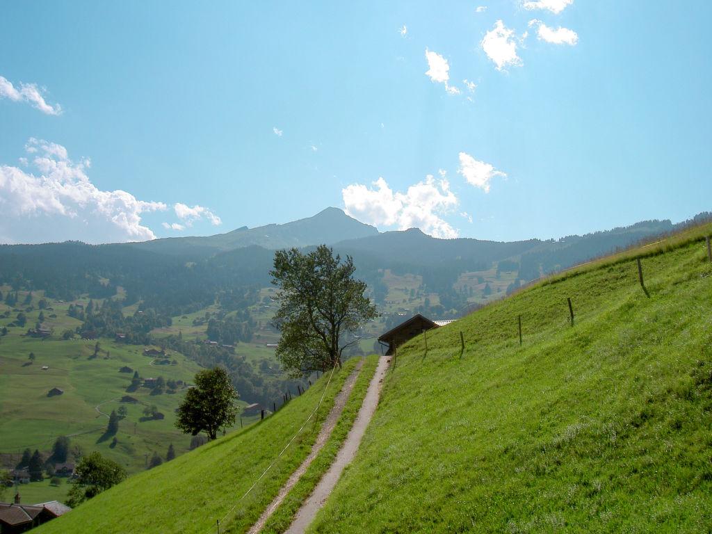 Ferienwohnung Wychel (106824), Grindelwald, Jungfrauregion, Berner Oberland, Schweiz, Bild 19