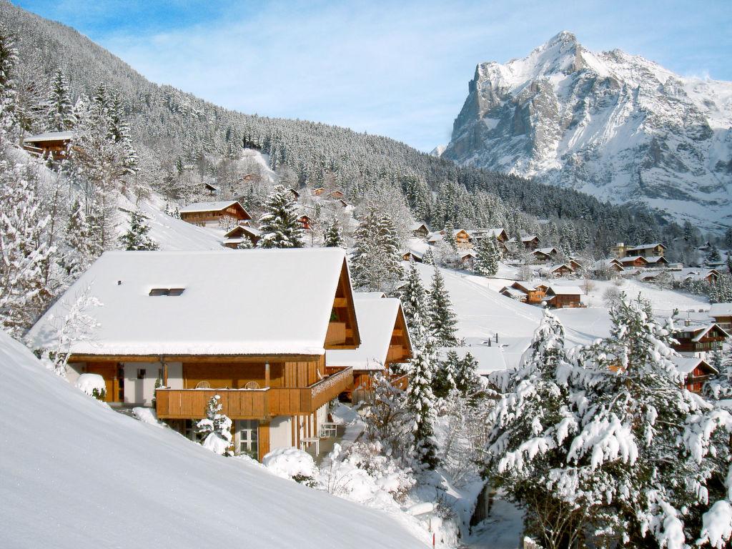 Ferienwohnung Wychel (106824), Grindelwald, Jungfrauregion, Berner Oberland, Schweiz, Bild 3
