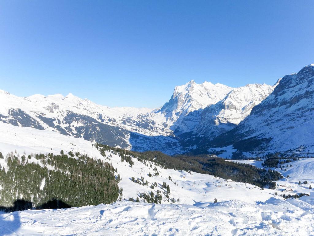 Ferienwohnung Chalet Tambour (GRL114) (361023), Grindelwald, Jungfrauregion, Berner Oberland, Schweiz, Bild 3