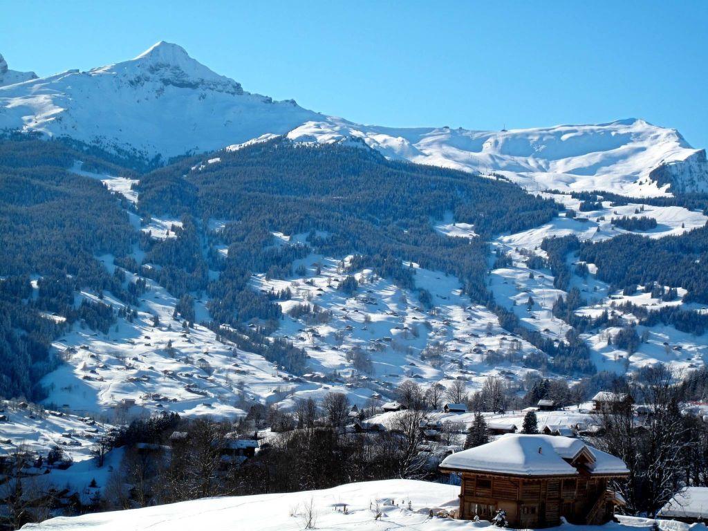 Ferienwohnung Chalet Tambour (GRL114) (361023), Grindelwald, Jungfrauregion, Berner Oberland, Schweiz, Bild 4