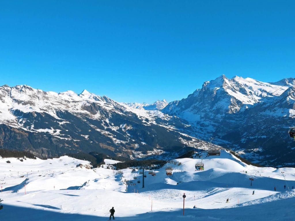 Ferienwohnung Chalet Tambour (GRL114) (361023), Grindelwald, Jungfrauregion, Berner Oberland, Schweiz, Bild 5