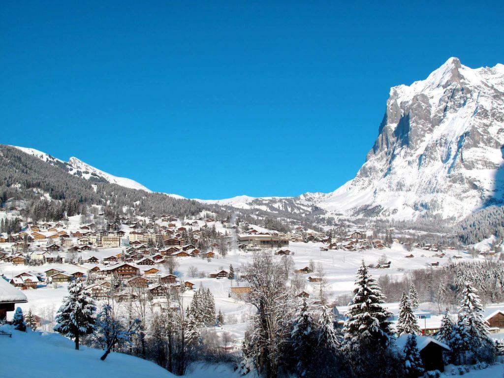 Ferienwohnung Chalet Tambour (GRL114) (361023), Grindelwald, Jungfrauregion, Berner Oberland, Schweiz, Bild 7