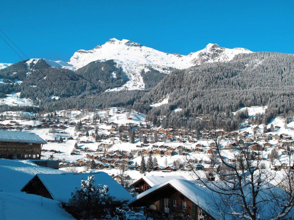 Ferienwohnung Chalet Tambour (GRL114) (361023), Grindelwald, Jungfrauregion, Berner Oberland, Schweiz, Bild 8