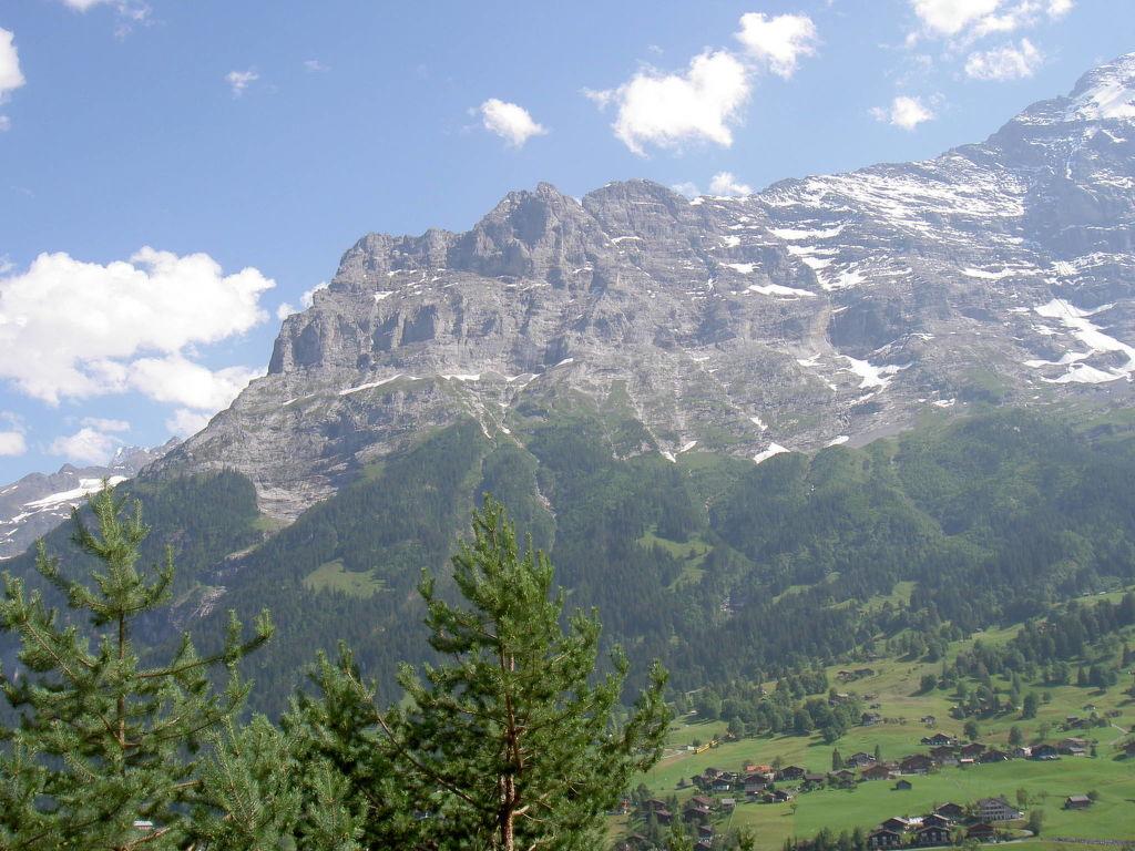 Ferienwohnung Chalet Tambour (GRL114) (361023), Grindelwald, Jungfrauregion, Berner Oberland, Schweiz, Bild 9