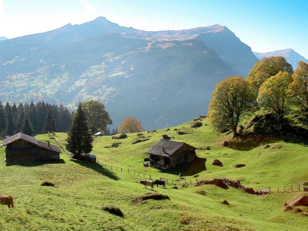 Ferienwohnung Chalet Tambour (GRL114) (361023), Grindelwald, Jungfrauregion, Berner Oberland, Schweiz, Bild 10