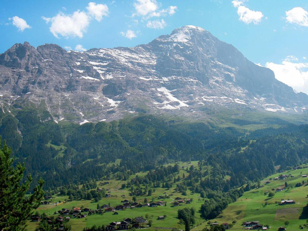 Ferienwohnung Chalet Tambour (GRL114) (361023), Grindelwald, Jungfrauregion, Berner Oberland, Schweiz, Bild 11
