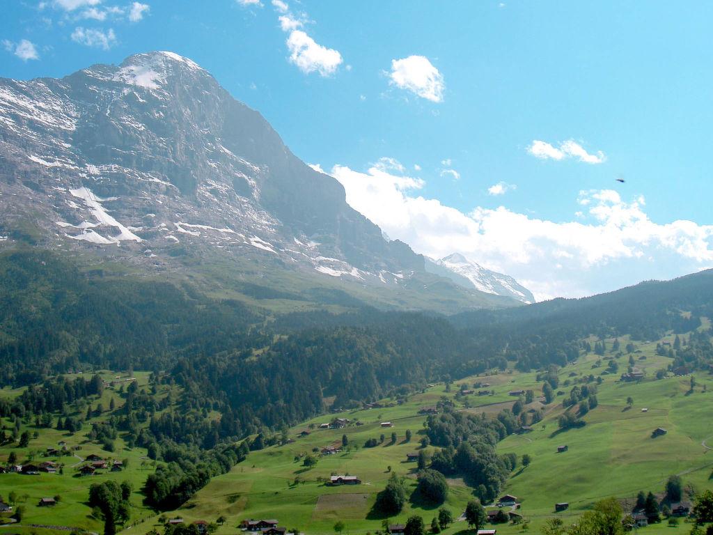 Ferienwohnung Chalet Tambour (GRL114) (361023), Grindelwald, Jungfrauregion, Berner Oberland, Schweiz, Bild 12