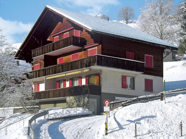 Chalet Desirée - Apartment - Grindelwald