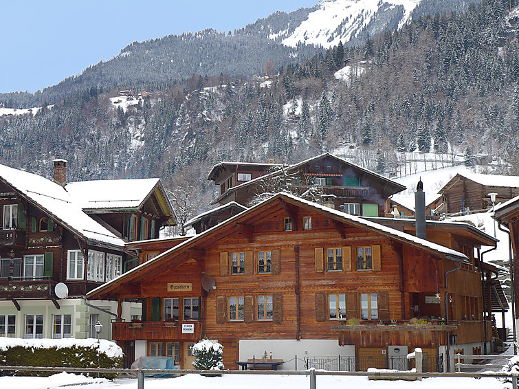 Chalet Grosshorn - Apartment - Lauterbrunnen