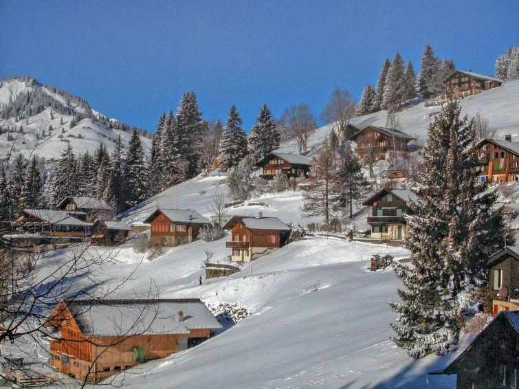 Jungfrau an der Ledi - Chalet - Wengen