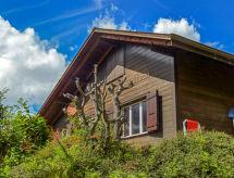 Вилла в Grindelwald - CH3823.29.1